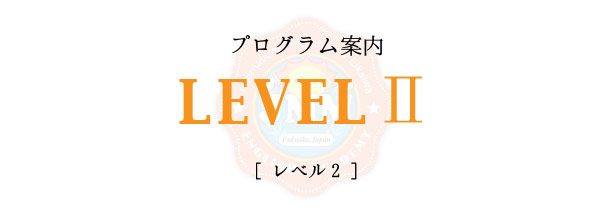 level2-title