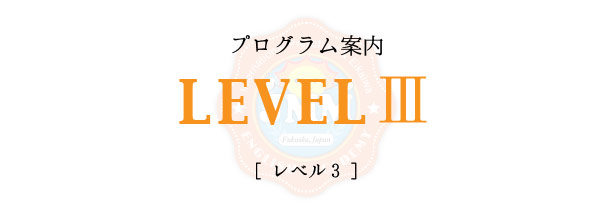 level3-title